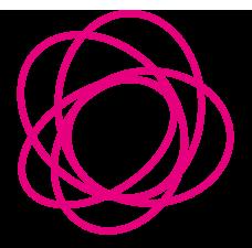 La rosa simboleggia Afrodite